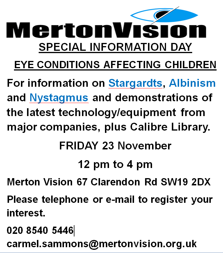 Merton Vision Event