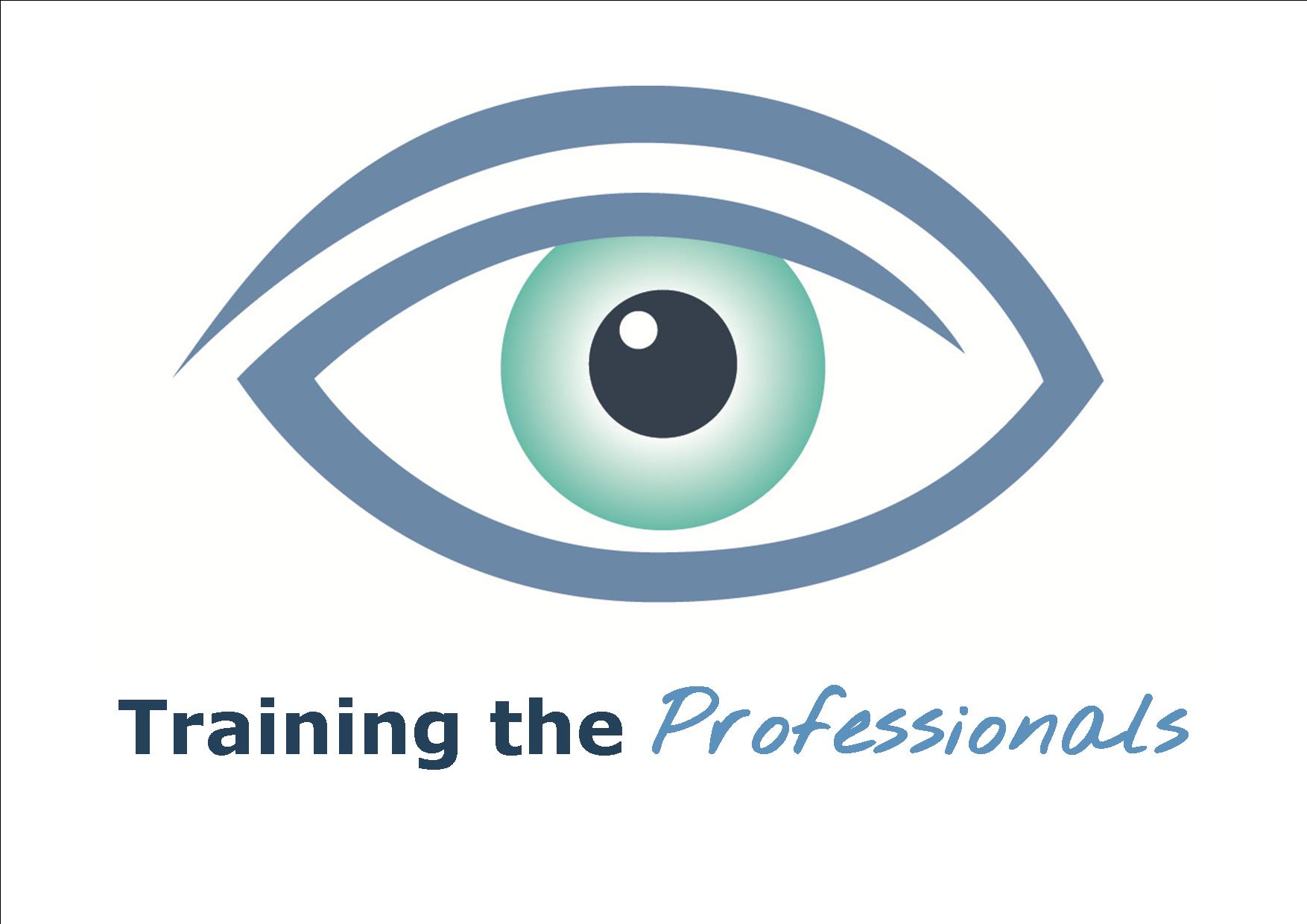 The Nystagmus Network eye logo and the words Training the Professionals
