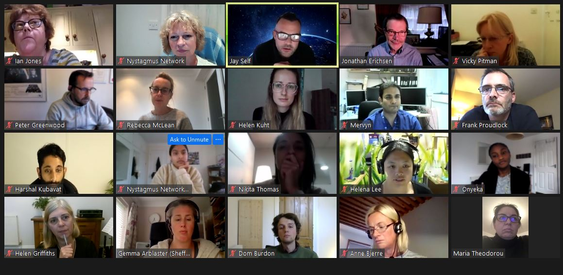 A screenshot of the Nystagmus Network UK research workshop on zoom, showing thumbnail images of 20 delegates.